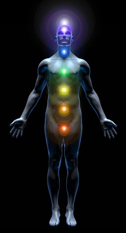 The Portals Of The Human Being